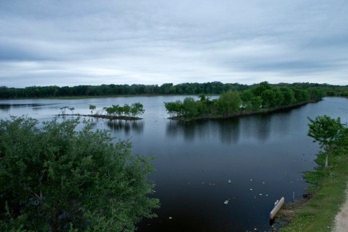 40 acre lake, brazos bend state park, texas