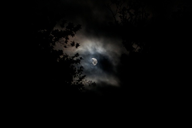 full moon, brazos bend state park, texas