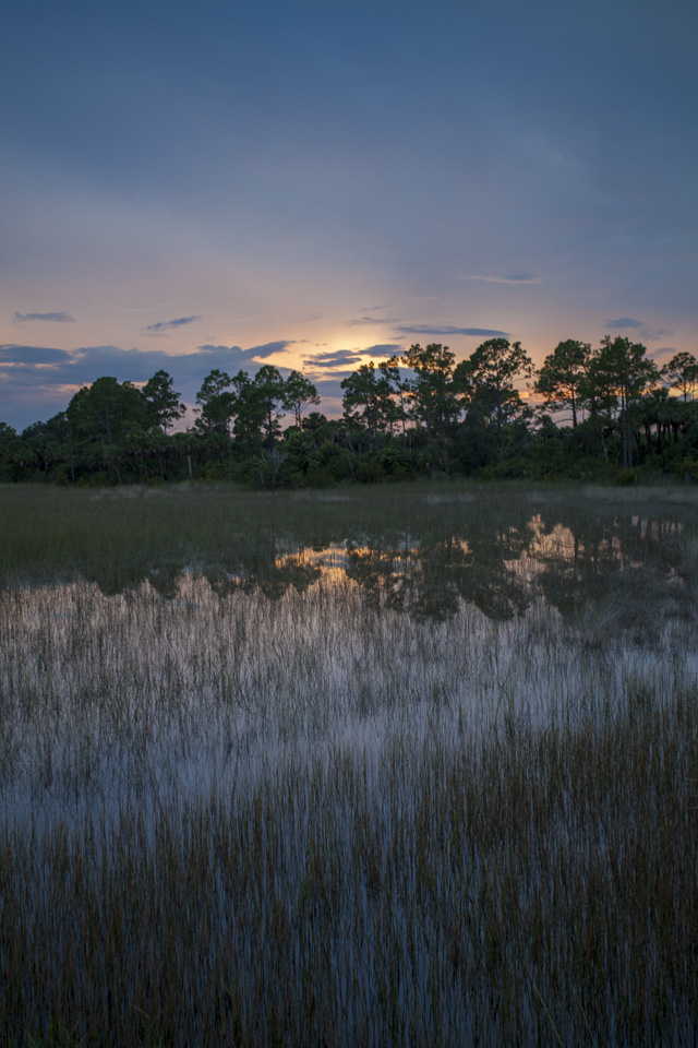 sunset over the river of grass and pine forests near bear island campground