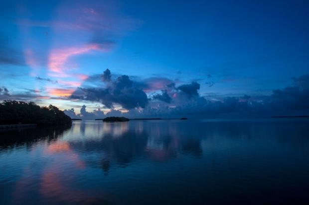 morning at flamingo bay