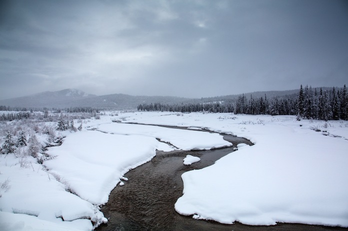 Winter wonderland on Pacific Creek in Grand Teton National PArk, WY