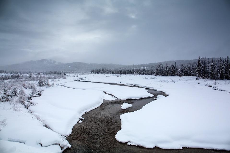Winter wonderland on Pacific Creek in Grand Teton National PArk, WY