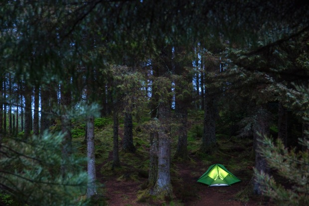 Tent camping in Ardcastle Wood