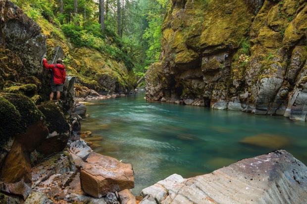 The scenic Ohanapecosh River