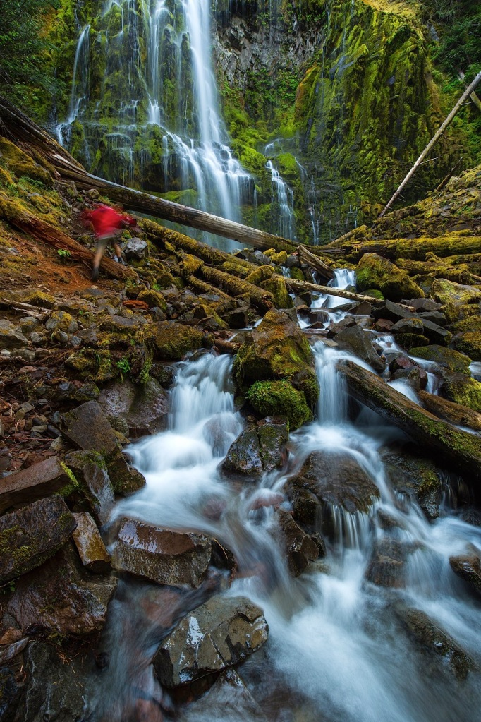 Man hiking Proxy Falls