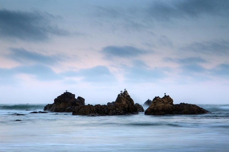 Sea birds and pastels accompany the rocks in the Pacific surf along Del Norte Coast