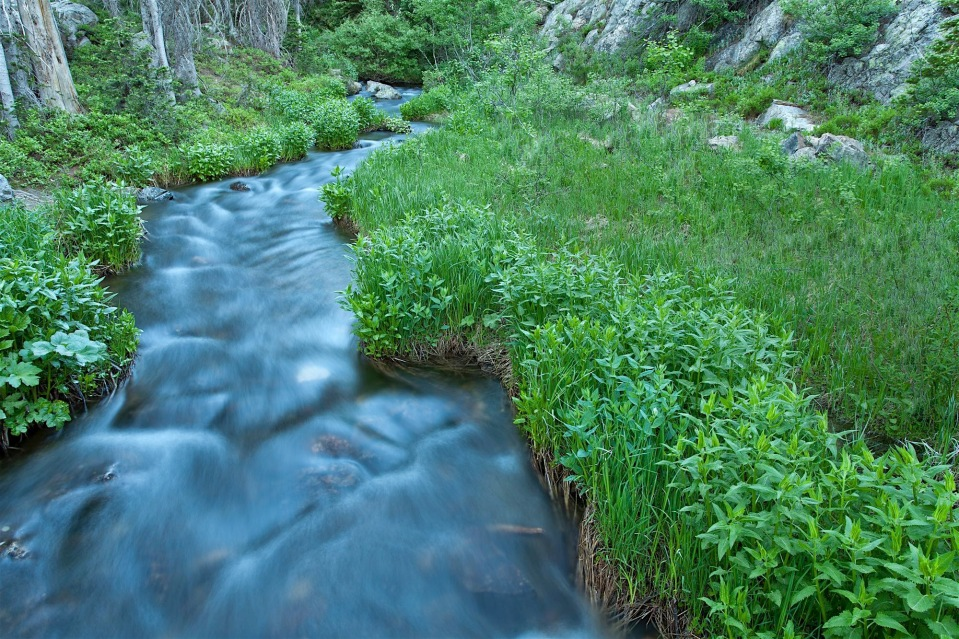 creek near dream lake, Rocky Mountain National Park, CO