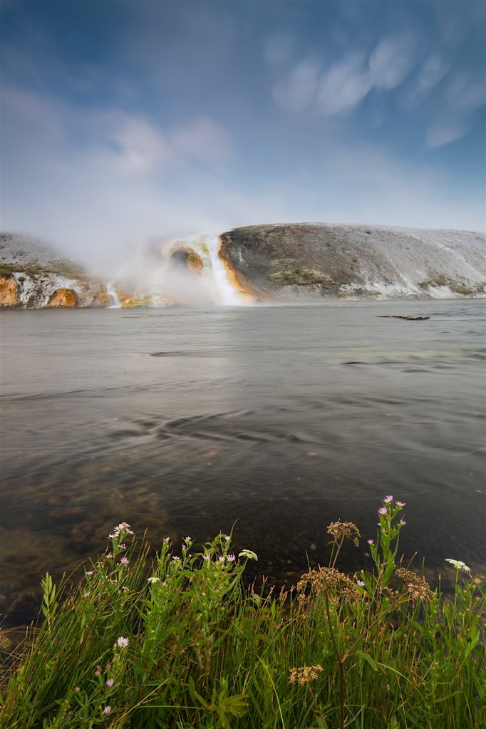 Flowers and the Firehole River at Grand Prismatic